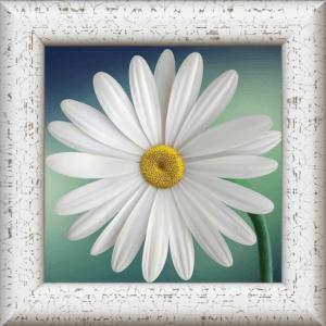 4 Canvas Tiles Print size 20 X 20 cm